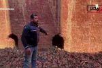 ناديه شكري تكتب : عاجل إلى محافظ البحيرة تكريم السيد بهاء فوراً