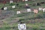 الحملة الوطنية تقدم التماسا جديدا لتسليم شهداء مقابر الأرقام وسلطات الاحتلال تتلكأ في الوفاء بالتزاماتها وتعهداتها