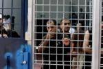 هيئة الأسرى: الأسير علي البرغوثي يدخل اضرابا مفتوحا عن الطعام احتجاجا على اهمال وضعه الصحي
