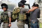 الاحتلال يعتقل (15) مواطناً من الضّفة
