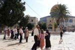 توتر في الأقصى إثر اقتحامه من مستوطنين وعناصر من مخابرات الاحتلال