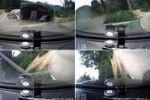 بالفيديو: درس قيادة المرأة للسيارة انتهى بحادث والمعلم يصرخ