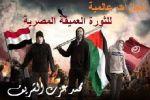 إنجازات عالمية للثورة العميقة المصرية/ محمد عزت الشريف