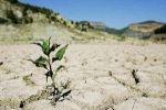 فشل مؤتمر الدوحة الدولي حول المناخ والموارد المائية هي ألأكثر تضررا /فضل كعوش