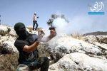 براجِمة فلسطينية .. دموع جنود الاحتلال تسيل بقنابلهم (صور)