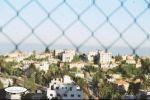 همسات ما بين فرح رام الله وتين تل/ بقلم وعدسة: زياد جيوسي
