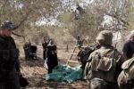 بيت لحم: مستوطنون يعتدون على متضامنين وقاطفي الزيتون في الجبعة