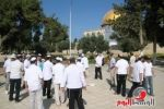 دعوات يهودية لاقتحام الأقصى لمدة أسبوع بدءاً من الخميس المقبل
