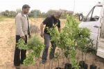 الاتحاد الزراعي بغزة ينفذ مشروع تمكين الأسر المحرومة اقتصادياً