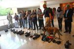 بالفيديو بعد تفتيشه قبل لقاء السيسي.. كيري يستعين بـ«كلب بوليسي» لتأمينه