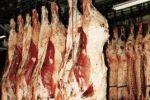 طولكرم: ضبط 250 كغم من اللحم البقري غير الصالح للاستخدام البشري