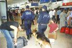 جزائرية تبلغ عن قنبلة بالمطار لتمنع زوجها من السفر
