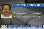 حشرجة وتشنج بعملية إعدام