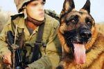 بالفيديو - تدريب وحدة خاصة من الكلاب للهجوم على اي عربي يقول الله اكبر