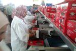 مجلس إدارة الإغاثة الزراعية يقوم بجولة تفقدية لمحطات تعبئة و تغليف المنتجات الزراعية في القدس و أريحا