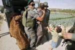 الاحتلال يعتقل محاضرا جامعيا ويداهم عدة بلدات في محافظة الخليل