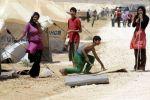 1024 قتيلا فلسطينيا في سوريا منذ بداية الصراع