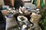 ضبط 13 كغم مخدرات في يطا جنوب الخليل