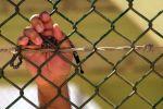 وزارة الاسرى:السجون تتحول إلى وباء صحي وعسقلان نموذجا