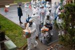 كورونا قتل 75 ألفا في أميركا.. وتوقعات الوفيات إلى 'الضعفين'