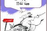 كرتون..يا فلسطين جينا لك / عبد الهادي شلا