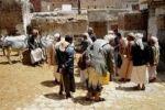 مقتل 8 يمنيين بسبب مقتل 'حمار'