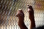 الاحتلال يحرم أسرى في سجن مجدو من الزيارة
