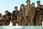 إلى فرقة ناجي عطا الله : كفى استهبال واستهزاء !
