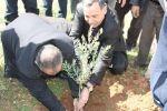 الإغاثة الزراعية الفلسطينية تشرع بزراعة 250000 شتلة مثمرة