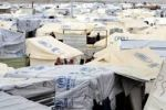 نائبة اردنية : زواج متعة للاجئات ..برلمانيون أردنيون يطالبون الحكومة بوقف