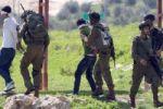 الاحتلال يعتقل 16 مواطنا من الضفة