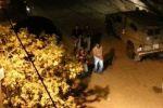 الاحتلال يعتقل 25 مواطنا من الضفة
