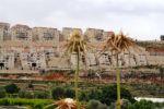 83% من الفلسطينيين اعتبروا قرار إدانة المستوطنات لصالح القضية