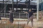 إصابة أردني برصاص إسرائيلي بعد أن تسلل عبر الحدود