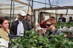 'العمل الزراعي' بغزة يستقبل وفدا رفيع المستوى من السفارة الاسترالية