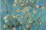 شكوْت غيابك لشجرة اللوْز -مجموعة شعرية جديدة للأديب سعيد الشيخ