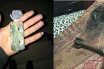 اطلاق قنابل 'الانيرجيا' خلال اقتحام المنازل واعتقال 4 مواطنين غرب رام الله