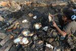 التحقيق بواقعة حرق كتب دينية بمدرسة مصرية