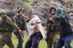مستوطنون يهاجمون قرية المغير شمال شرق رام الله