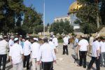 'فتح' اقليم القدس: 3 شهداء،149 معتقل و 465 صهيوني اقتحموا الاقصى خلال كانون الثاني 2016