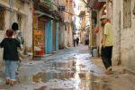 القاضي فؤاد بكر: هل يستثنى اللاجئون الفلسطينيون في لبنان من العفو العام؟
