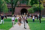 رأي.. لماذا تربعت هارفارد على قمة النجاح الأكاديمي؟