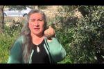 نادية ابو غطاس مقاومة من طراز آخر ...يوسف شرقاوي