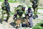 هيئة شؤون الاسرى تنشر اسماؤهم:'هؤلاء المجرمون الاسرائيليون يتلقون دعما ماليا وحماية قانونية من حكومة اسرائيل'