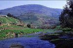 مؤتمر للتعاون ألأقليمي حول نهر ألأردن .. هذه المؤتمرات التطبيعية لا تصب إلا في صالح اسرائيل....اعداد المهندس فضل كعوش