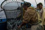 صيَّادو تونس أصبحوا يخشون البحر بسبب كثرة جثث المهاجرين.. ستفاجئك كيفية دفنهم
