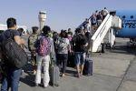 تقرير أمريكي.. للأسف الكلاب حلت مكان السياح في منتجعات مصر والأشباح استأجرت الغرف