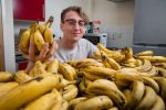 رجل نباتي يعيش على 150 موزة أسبوعياً!