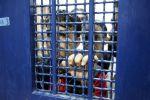 هيئة شؤون الاسرى:قوات الإحتلال تحتجز الأسرى المضربين في ظروف قاسية