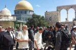المستوطنون يقتحمون الأقصى مجددا تحت حراسة قوات الاحتلال